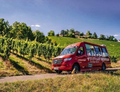 Mit dem Cabrio-Bus durch die Weinberge