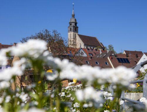 Ein Highlight im Landkreis Böblingen – Die Mitte Baden-Württembergs